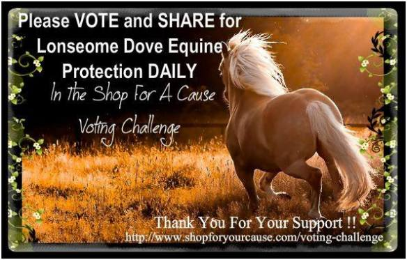 horselonesomedoveequineprotection2